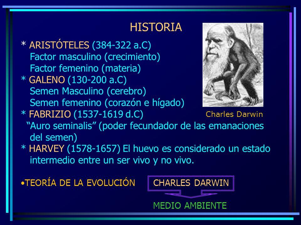 HISTORIA * ARISTÓTELES (384-322 a.C) Factor masculino (crecimiento)