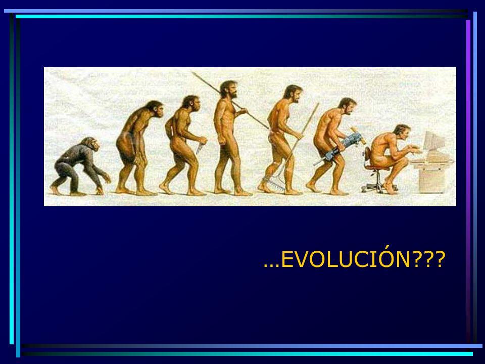…EVOLUCIÓN