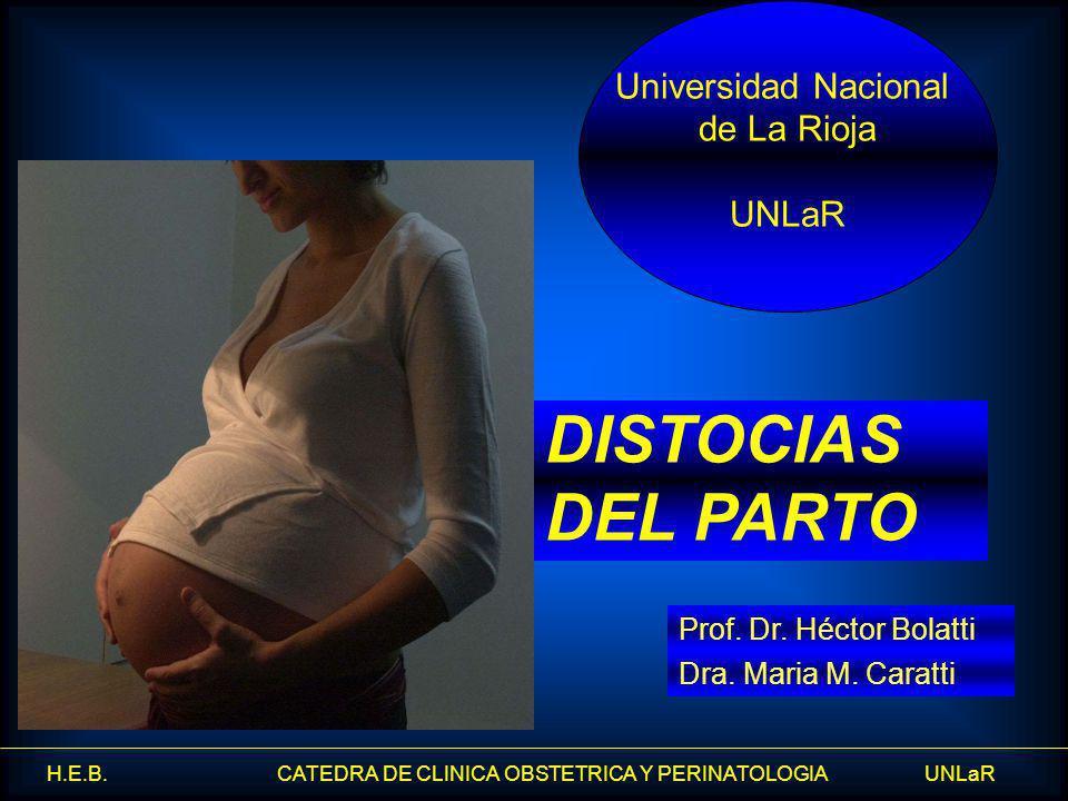 DISTOCIAS DEL PARTO Universidad Nacional de La Rioja UNLaR