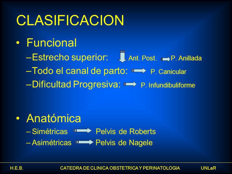 CLASIFICACION Funcional Anatómica