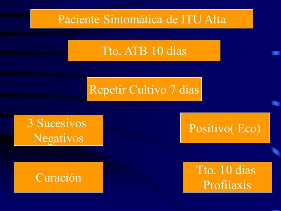Paciente Sintomática de ITU Alta