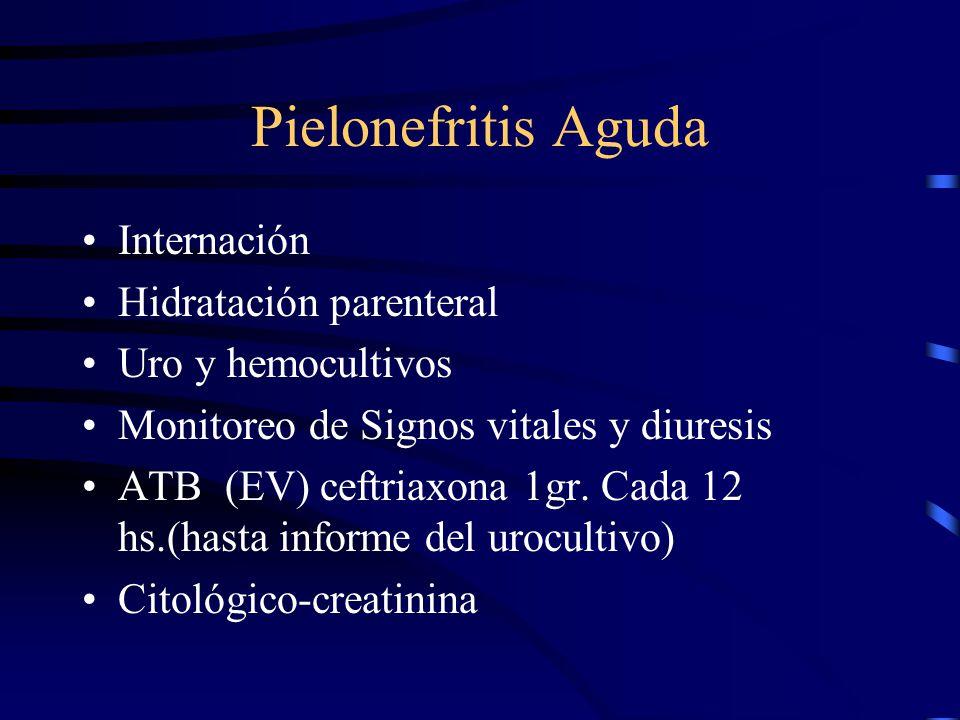 Pielonefritis Aguda Internación Hidratación parenteral