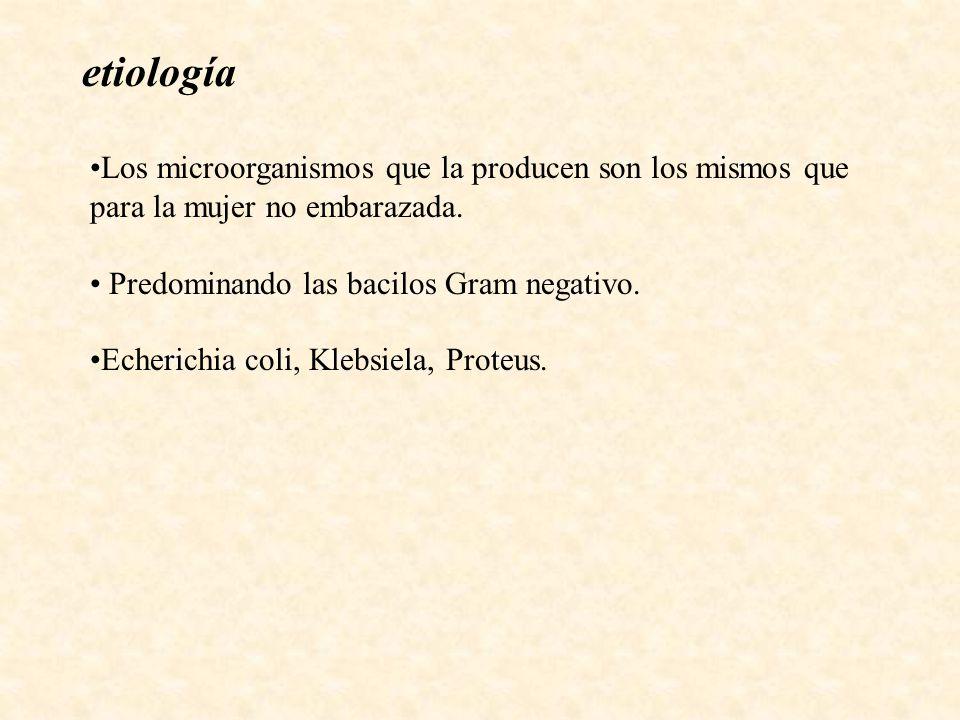 etiología Los microorganismos que la producen son los mismos que para la mujer no embarazada. Predominando las bacilos Gram negativo.