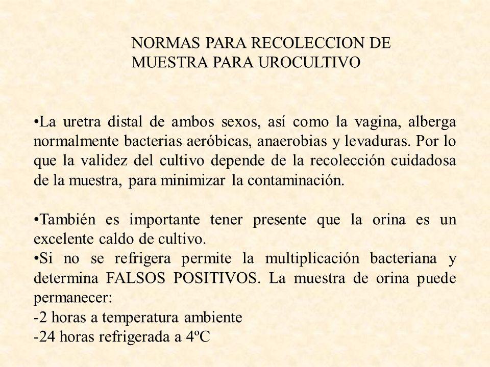 NORMAS PARA RECOLECCION DE MUESTRA PARA UROCULTIVO