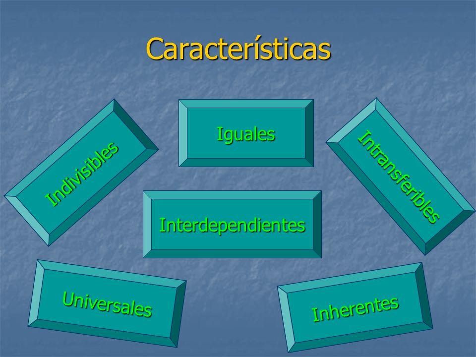 Características Iguales Intransferibles Indivisibles Interdependientes