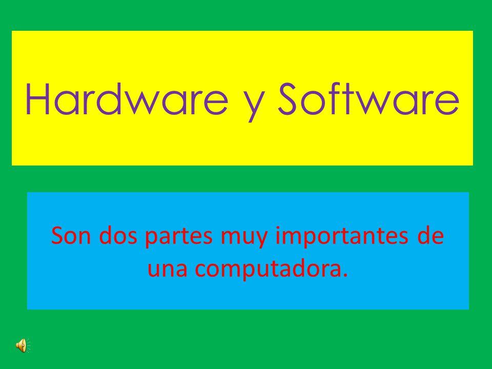 Son dos partes muy importantes de una computadora.