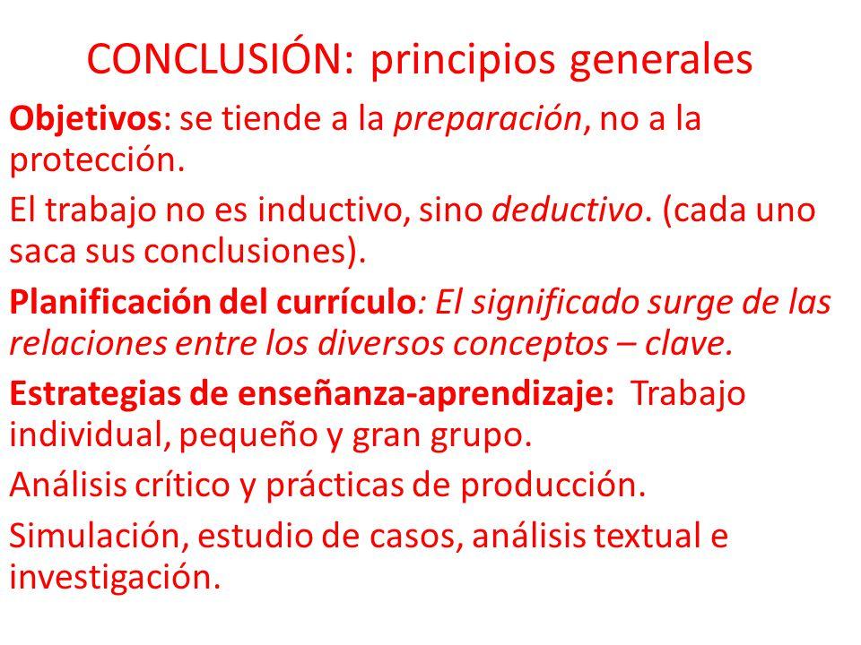 CONCLUSIÓN: principios generales