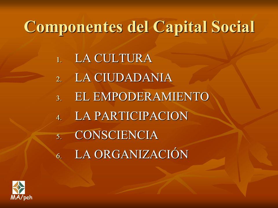 Componentes del Capital Social
