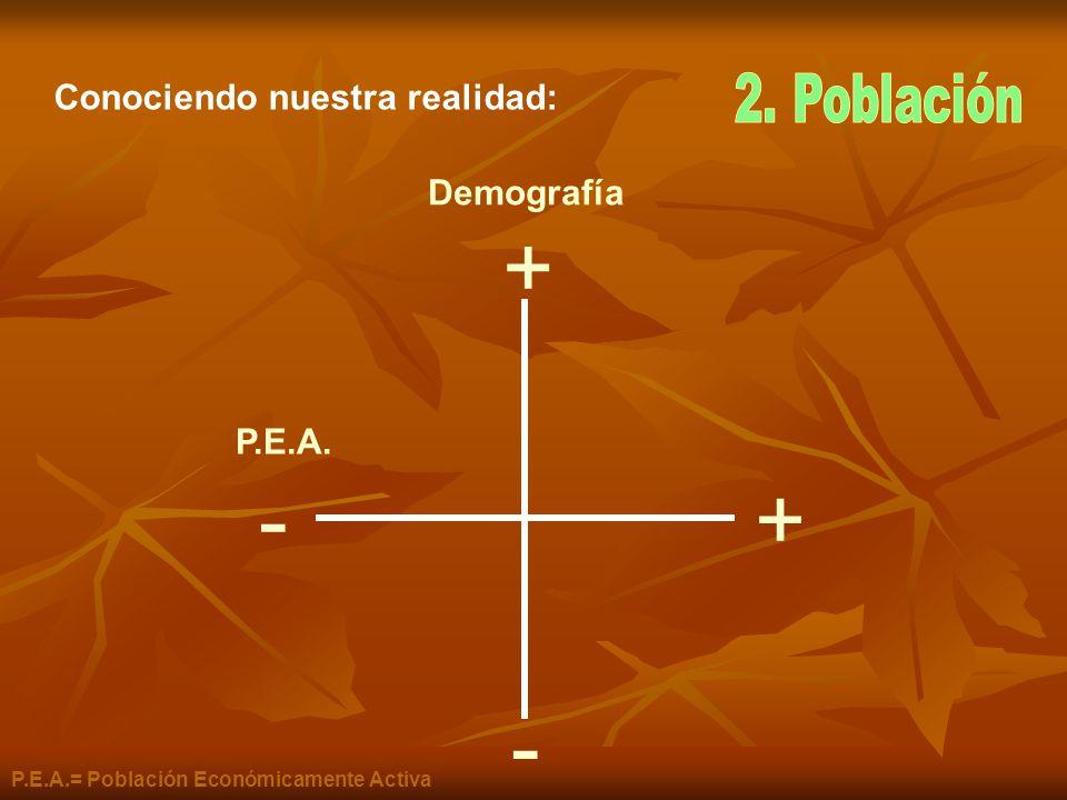 + - + - Conociendo nuestra realidad: 2. Población Demografía P.E.A.