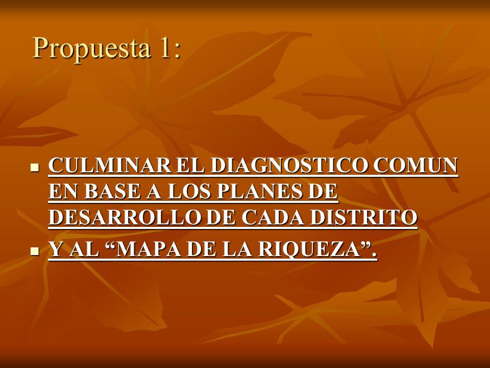 Propuesta 1: CULMINAR EL DIAGNOSTICO COMUN EN BASE A LOS PLANES DE DESARROLLO DE CADA DISTRITO.