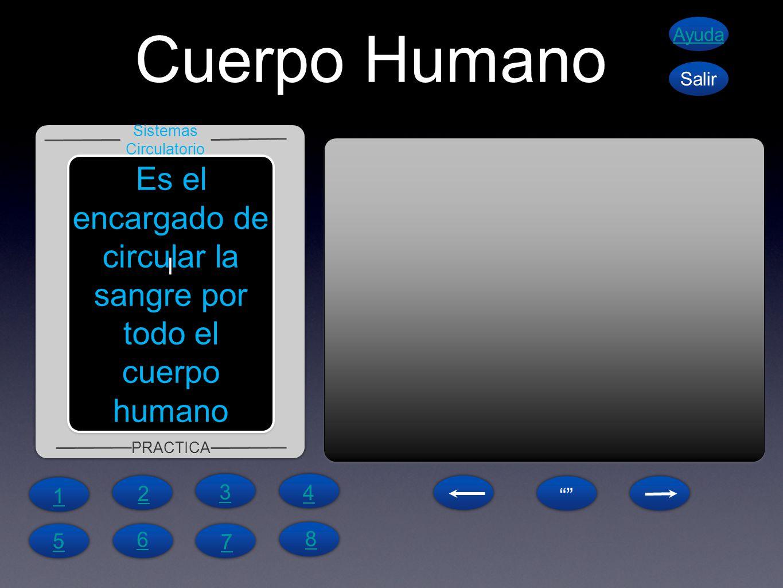 Cuerpo Humano Ayuda. Salir. Sistemas Circulatorio. Es el encargado de circular la sangre por todo el cuerpo humano.