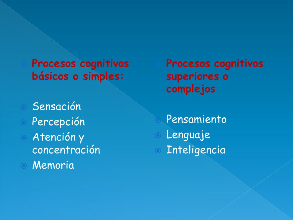 Procesos cognitivos básicos o simples: