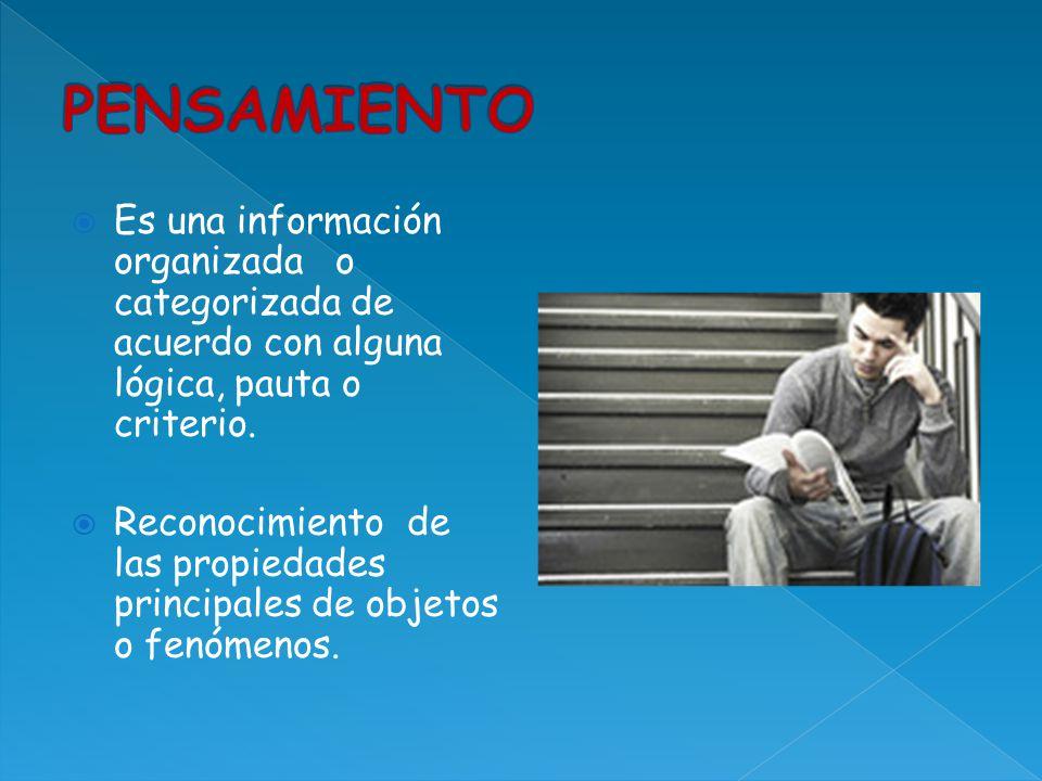 PENSAMIENTO Es una información organizada o categorizada de acuerdo con alguna lógica, pauta o criterio.