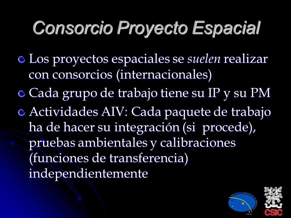 Consorcio Proyecto Espacial
