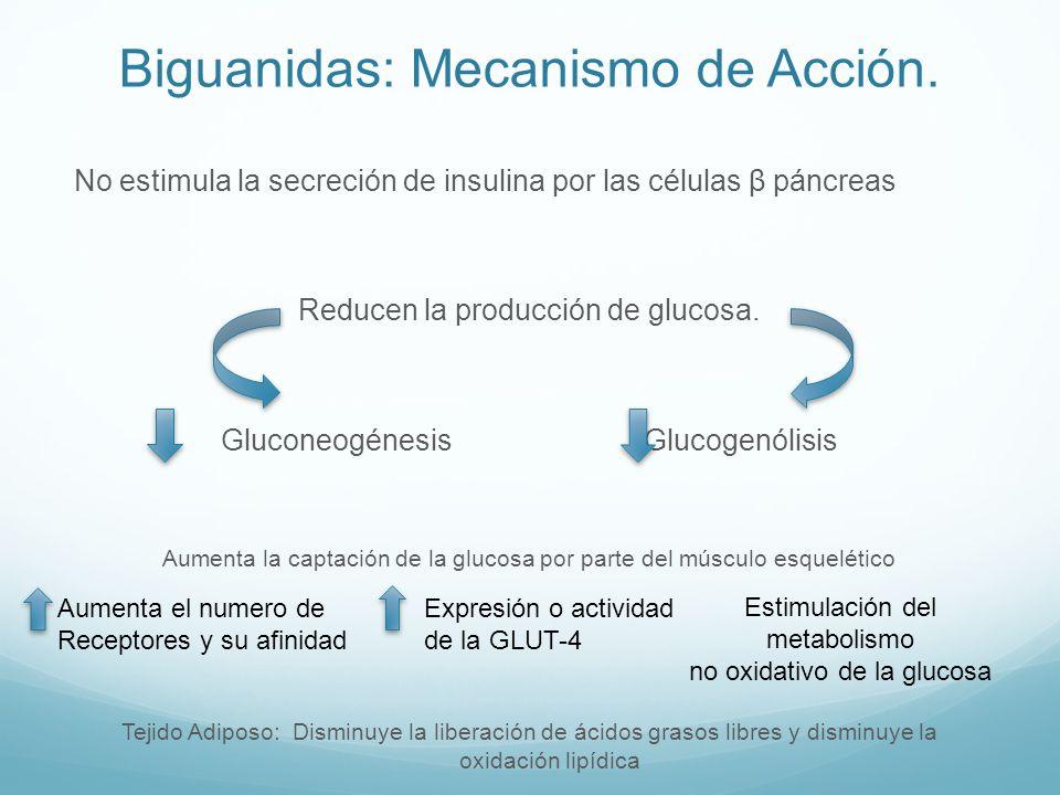 Biguanidas: Mecanismo de Acción.