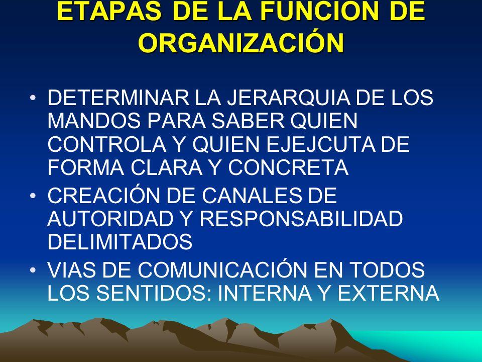 ETAPAS DE LA FUNCIÓN DE ORGANIZACIÓN