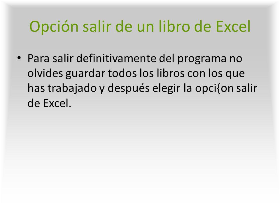 Opción salir de un libro de Excel
