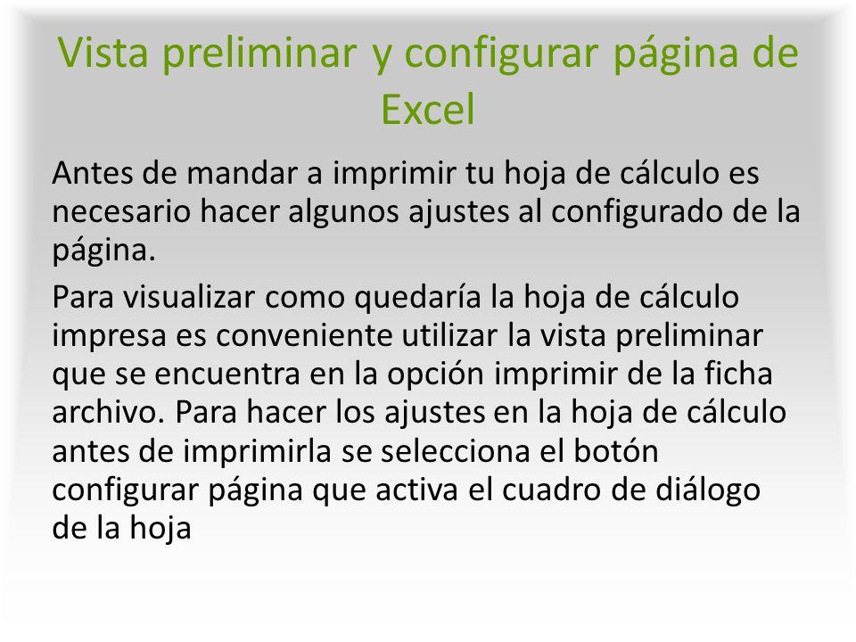 Vista preliminar y configurar página de Excel