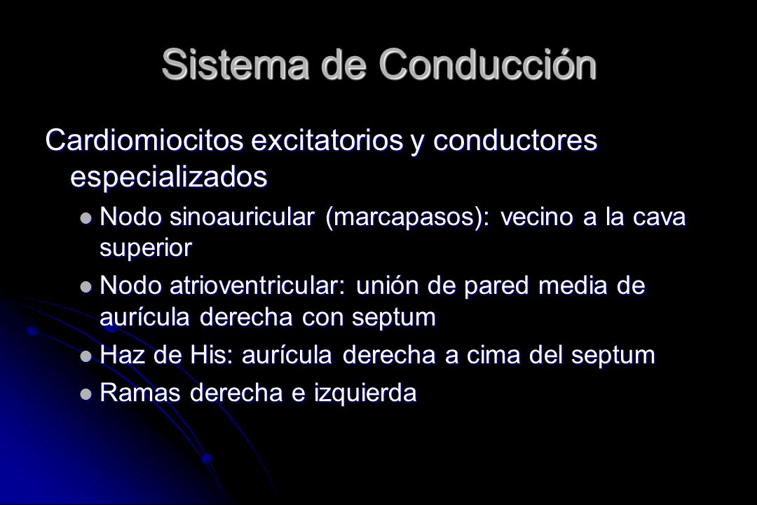 Sistema de ConducciónCardiomiocitos excitatorios y conductores especializados. Nodo sinoauricular (marcapasos): vecino a la cava superior.