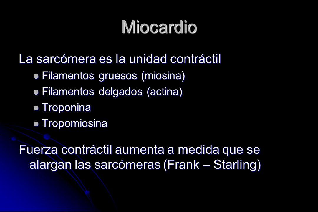 Miocardio La sarcómera es la unidad contráctil