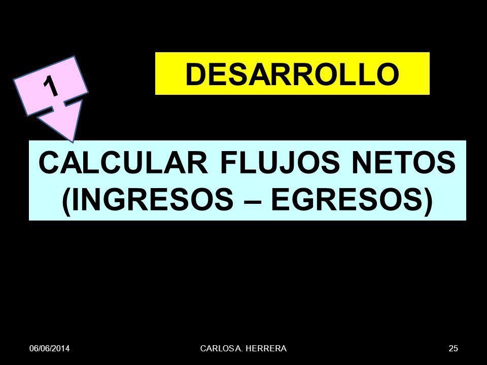 DESARROLLO CALCULAR FLUJOS NETOS (INGRESOS – EGRESOS)