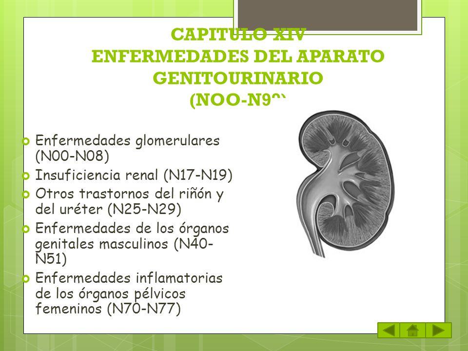 CAPITULO XIV ENFERMEDADES DEL APARATO GENITOURINARIO (NOO-N99)