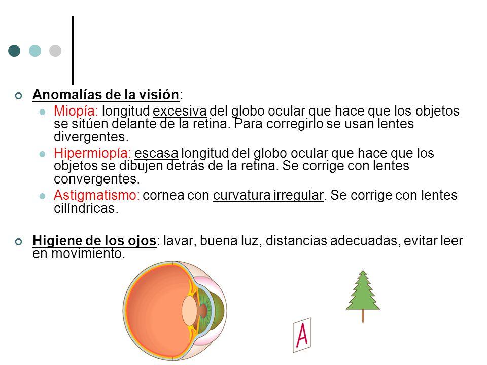 Anomalías de la visión: