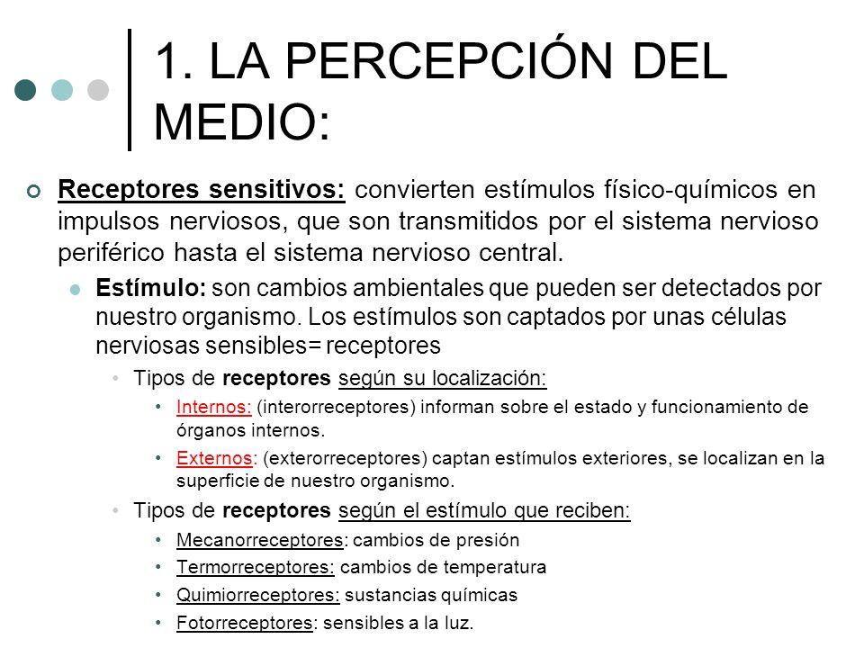 1. LA PERCEPCIÓN DEL MEDIO: