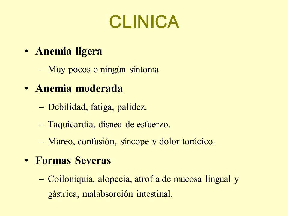 CLINICA Anemia ligera Anemia moderada Formas Severas