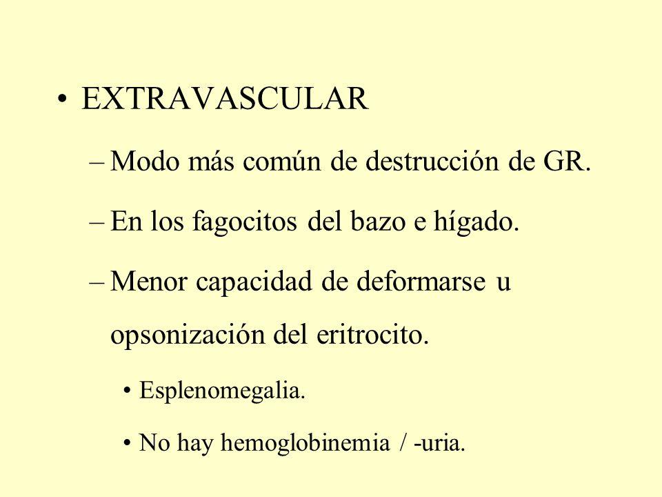 EXTRAVASCULAR Modo más común de destrucción de GR.