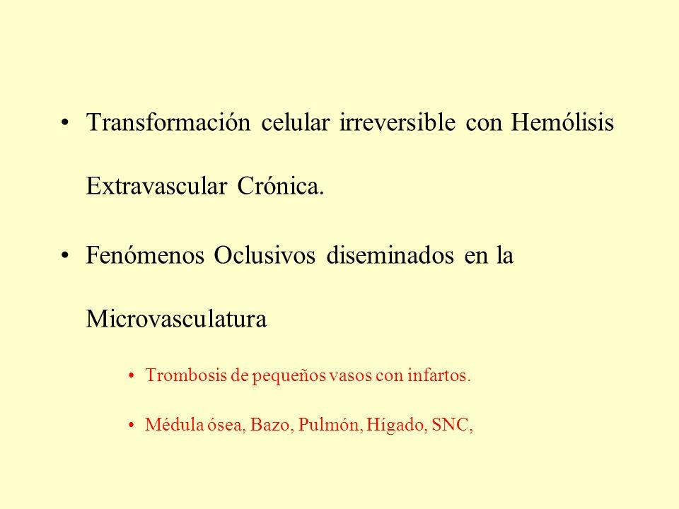 Fenómenos Oclusivos diseminados en la Microvasculatura