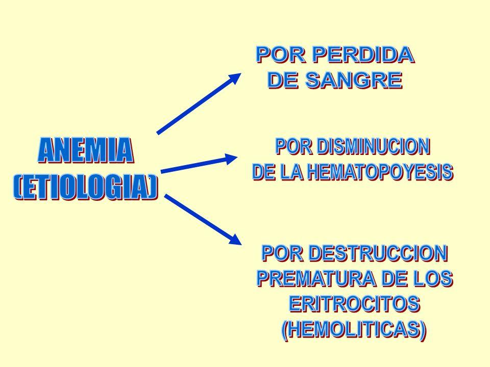 ANEMIA (ETIOLOGIA) POR PERDIDA DE SANGRE POR DISMINUCION