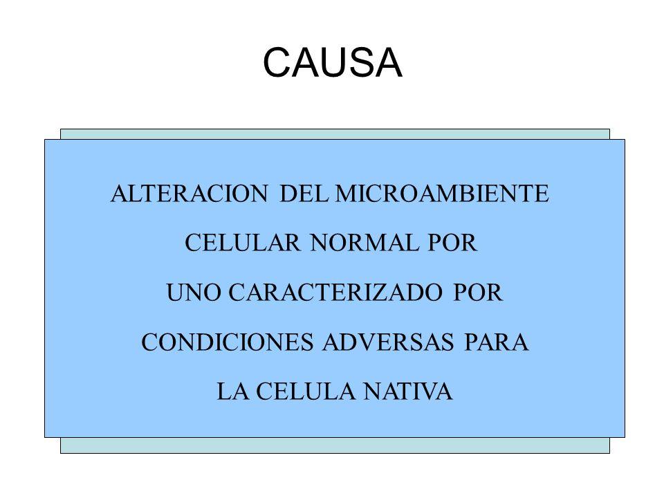 CAUSA ALTERACION DEL MICROAMBIENTE CELULAR NORMAL POR
