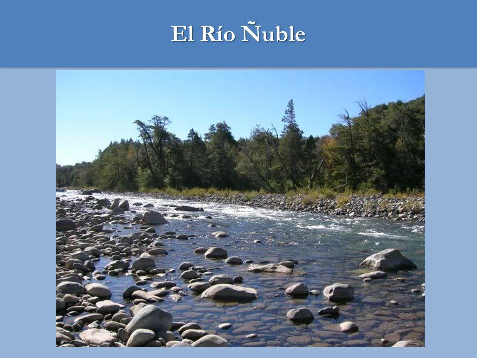 El Río Ñuble