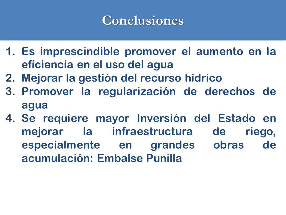 Conclusiones Es imprescindible promover el aumento en la eficiencia en el uso del agua. Mejorar la gestión del recurso hídrico.