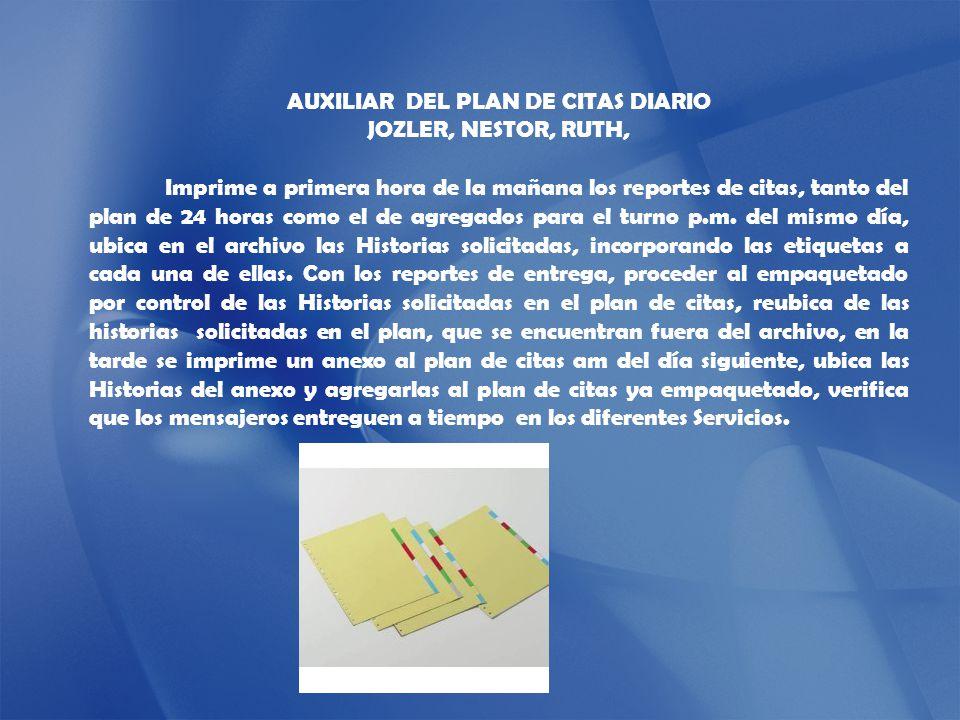 AUXILIAR DEL PLAN DE CITAS DIARIO
