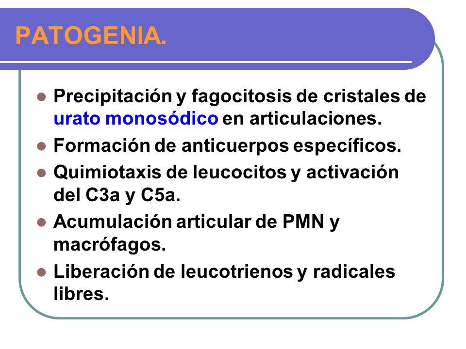 PATOGENIA. Precipitación y fagocitosis de cristales de urato monosódico en articulaciones. Formación de anticuerpos específicos.