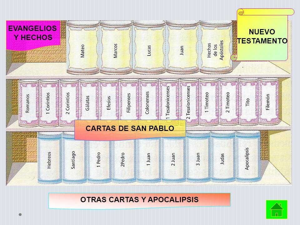 OTRAS CARTAS Y APOCALIPSIS