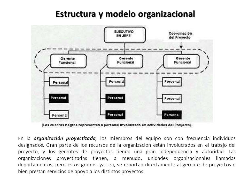Estructura y modelo organizacional