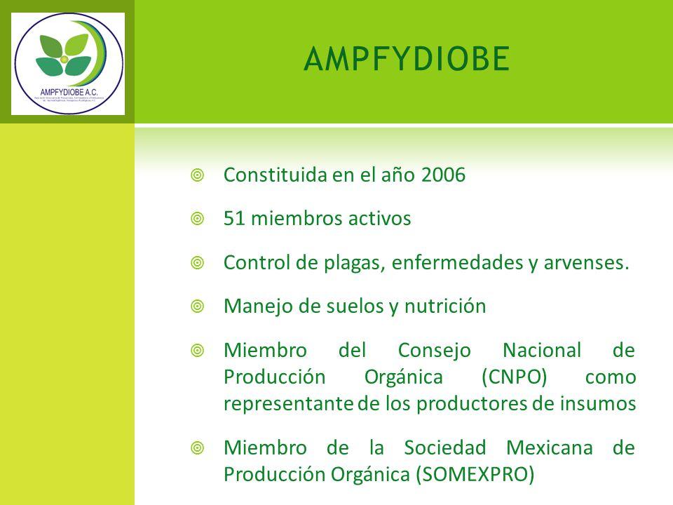 AMPFYDIOBE Constituida en el año 2006 51 miembros activos