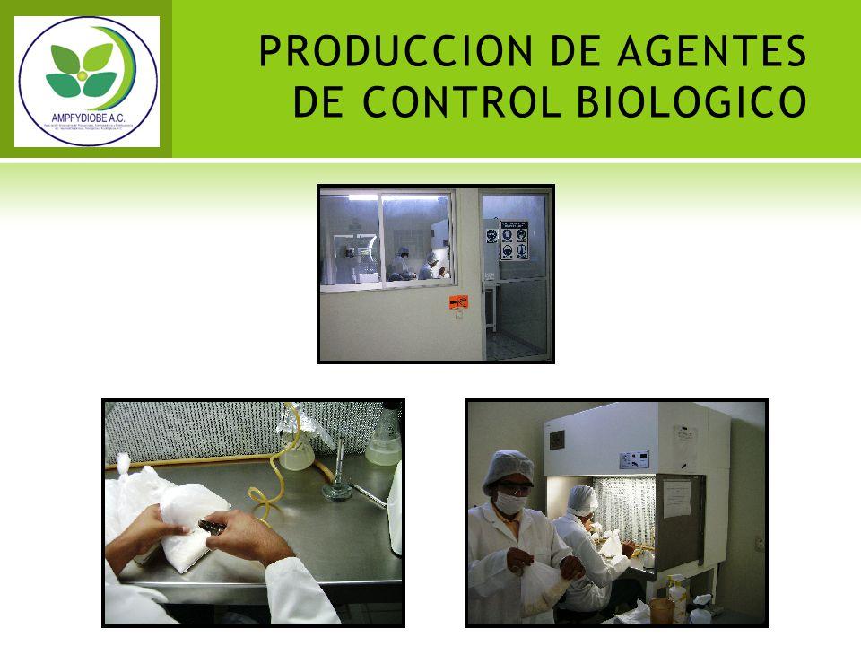 PRODUCCION DE AGENTES DE CONTROL BIOLOGICO