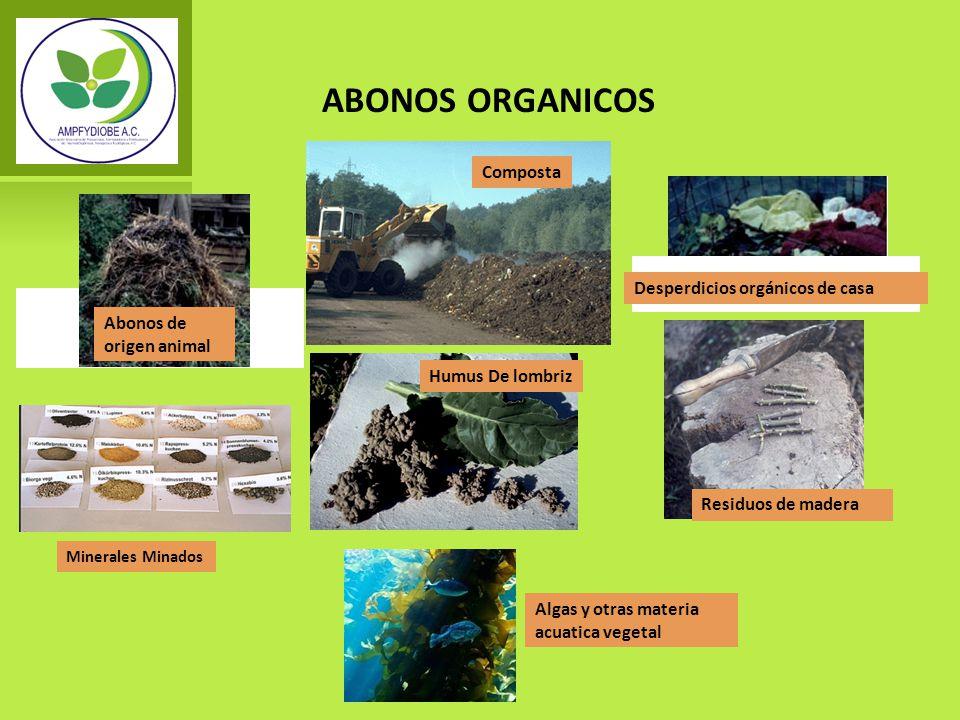 ABONOS ORGANICOS Composta Desperdicios orgánicos de casa Abonos de