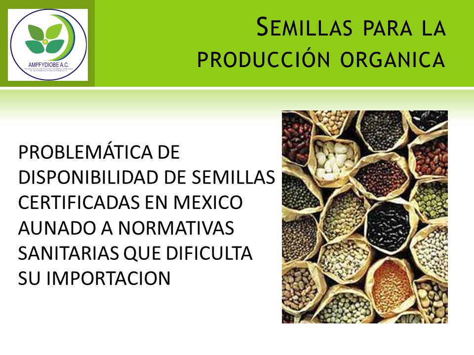 Semillas para la producción organica