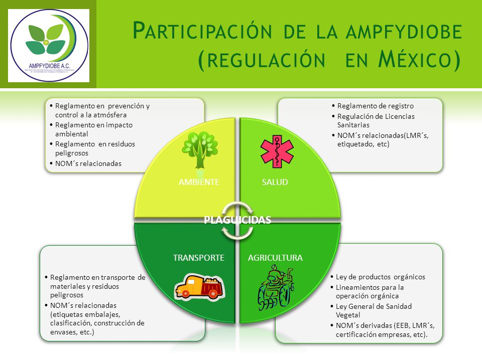 Participación de la ampfydiobe (regulación en México)