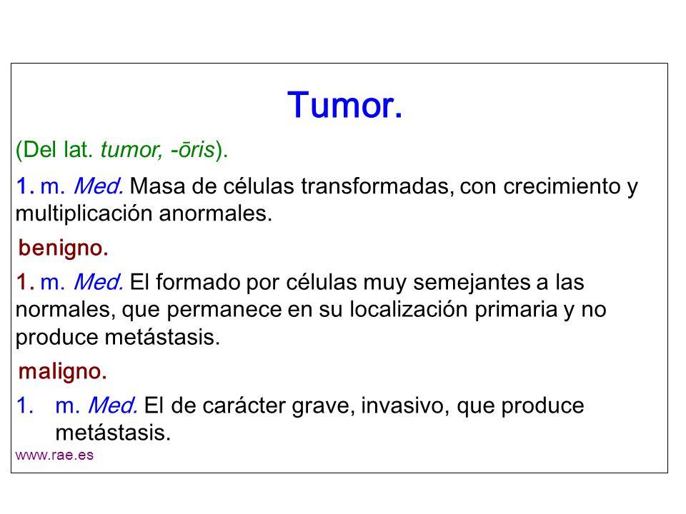 Tumor. (Del lat. tumor, -ōris).