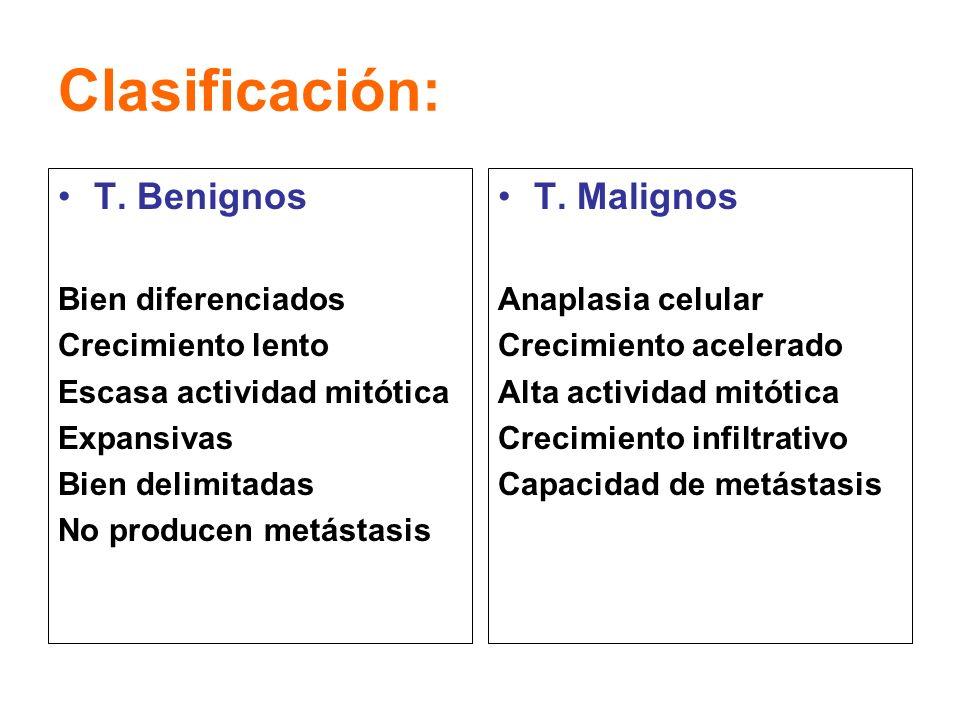 Clasificación: T. Benignos T. Malignos Bien diferenciados