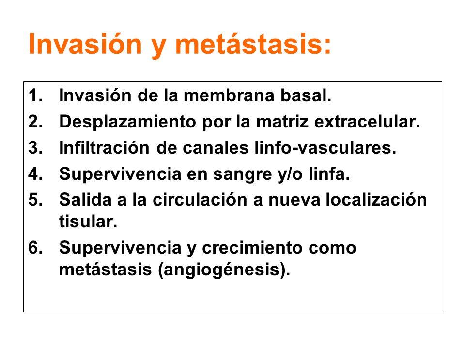 Invasión y metástasis:
