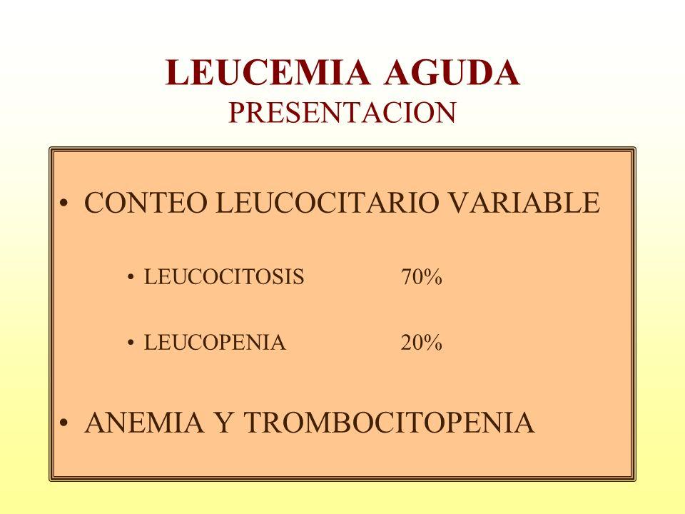 LEUCEMIA AGUDA PRESENTACION