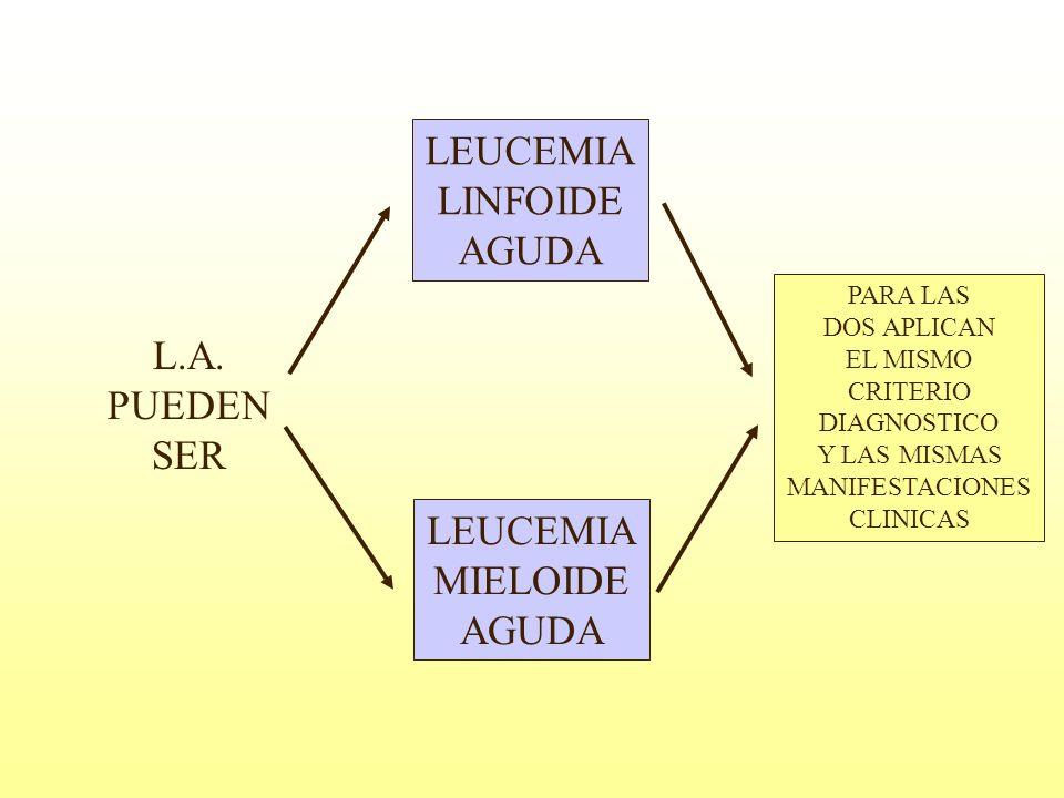 LEUCEMIA LINFOIDE AGUDA L.A. PUEDEN SER LEUCEMIA MIELOIDE AGUDA