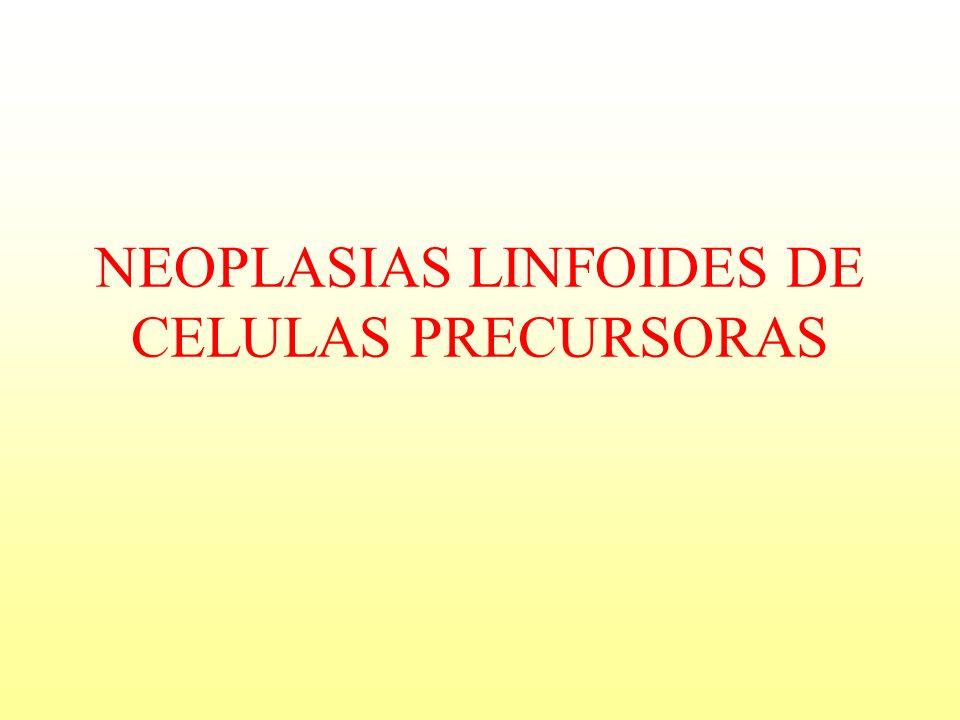 NEOPLASIAS LINFOIDES DE CELULAS PRECURSORAS
